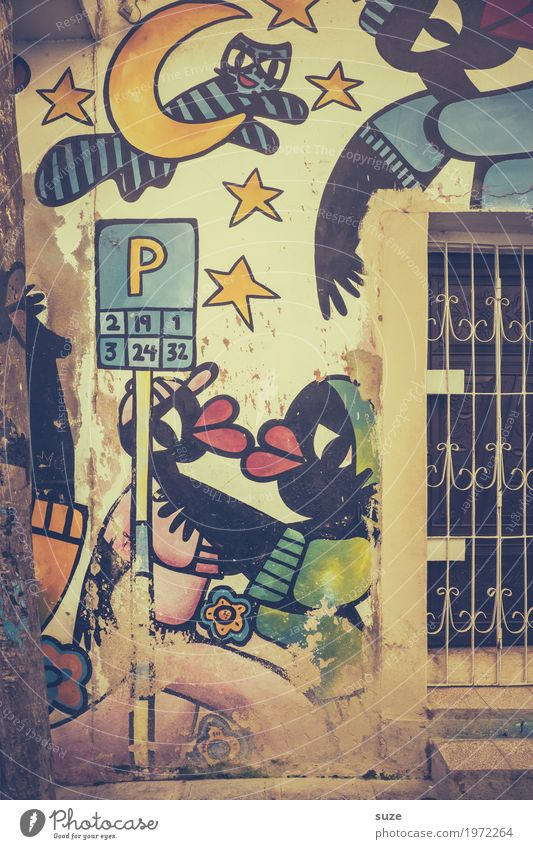 Cat Old Town House (Residential Structure) Window Graffiti Time Art Facade Retro Dirty Culture Happiness Poverty Transience Cute