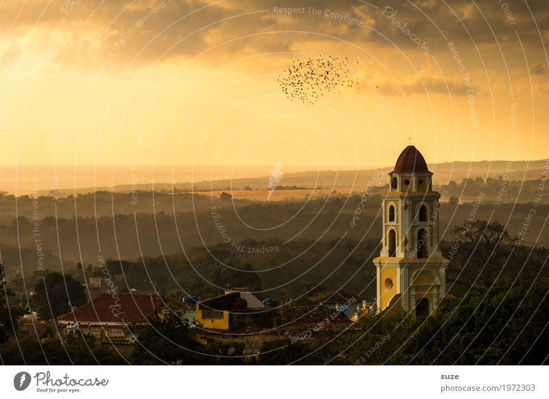 determination Nature Landscape Sky Warmth Church Places Manmade structures Building Tourist Attraction Landmark Bird Flock Fantastic Historic Emotions Moody