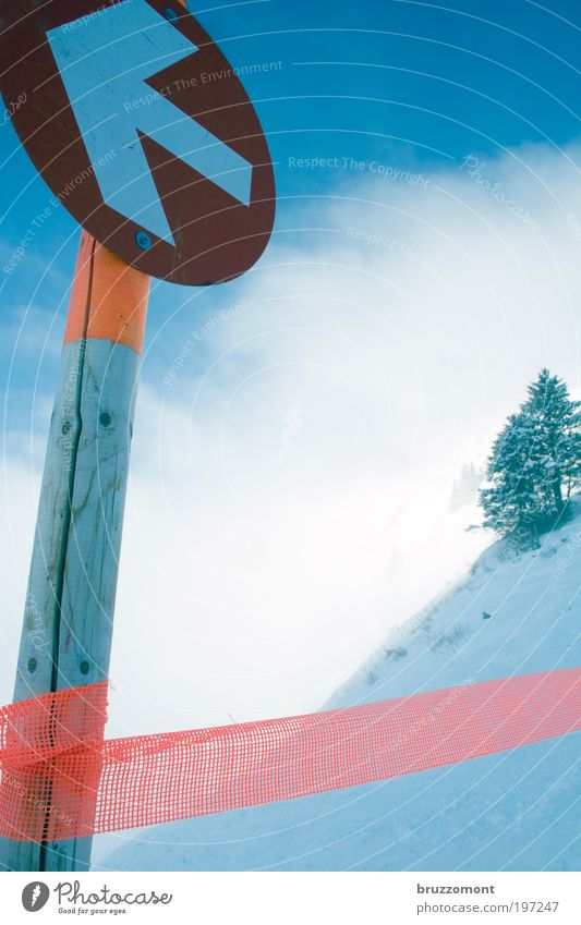 Tree Blue Winter Clouds Snow Ice Orange Fog Environment Signs and labeling Skiing Frost Arrow Signage Barrier