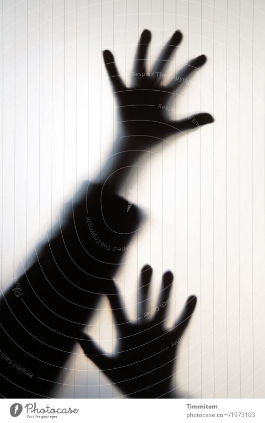 Human being Hand Joy Black Emotions Playing Fear Glass Arm Fingers Threat Creepy Pane Excessive Theatrical