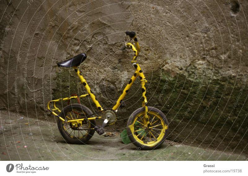 Bicycle Things Bicycle frame Dappled Spotted Pedal Spokes Bicycle saddle Bicycle handlebars Handlebars Wheel rim Bicycle chain