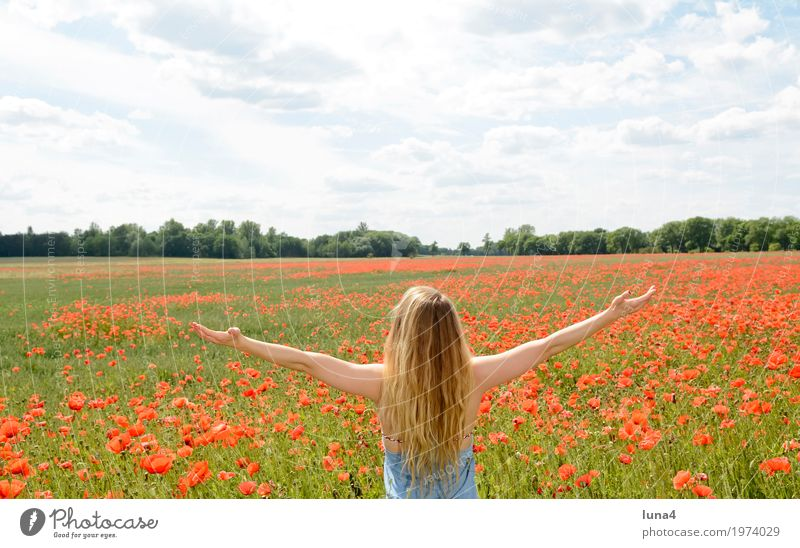 Woman in poppy field Joy Happy Harmonious Contentment Relaxation Calm Summer Summer vacation Sun Success Feminine Young woman Youth (Young adults) Adults 1
