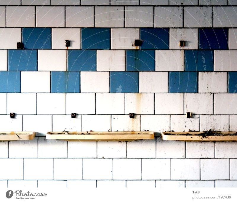 Old Blue White House (Residential Structure) Wall (building) Architecture Building Wall (barrier) Dirty Wait Gloomy Swimming pool Bathroom Clean Manmade structures Factory