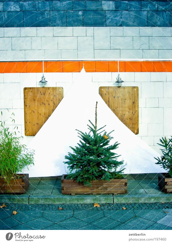 House (Residential Structure) Colour Wood Facade Christmas tree Tile Fir tree Wooden board Watercraft Sail December Foliage plant Triangle Coniferous trees Shutter Spruce