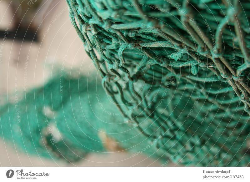 Ocean Green Network Net Knot Closing time