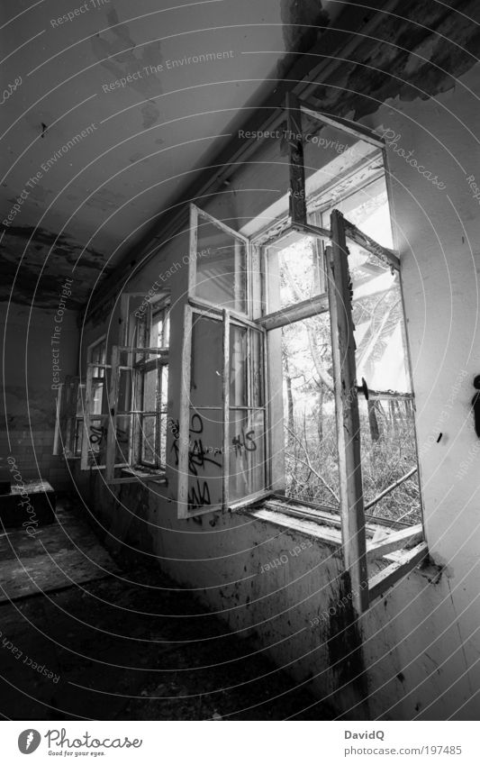 Old White Black Window Building Broken Decline Manmade structures Ruin Black & white photo Light