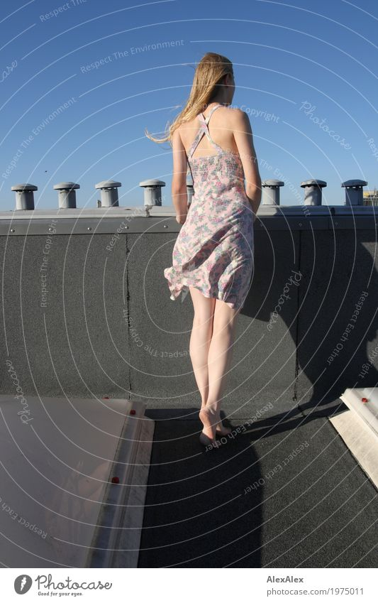prospect Lifestyle Joy Beautiful Far-off places Roof Chimney Young woman Youth (Young adults) Legs 18 - 30 years Adults Landscape Cloudless sky