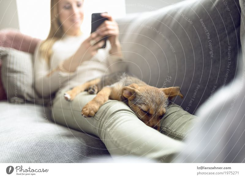 Puppy sleeping on owner laps Relaxation Calm Reading Sofa Living room PDA Woman Adults Animal Pet Dog Smiling Sleep Safety (feeling of) closeness Copy Space
