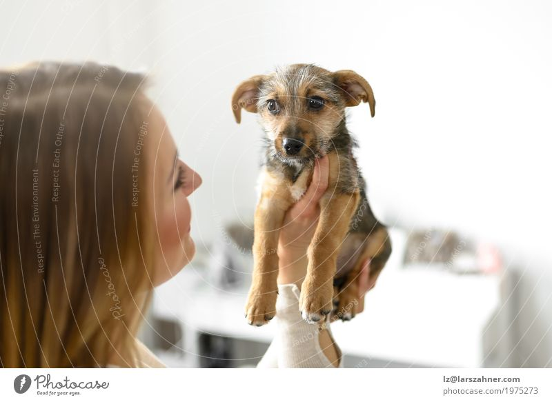 Young woman holding her puppy Dog Youth (Young adults) Young woman White Animal Small Copy Space Cute Pet Safety (feeling of) Hold Cuddling Puppy Loyal