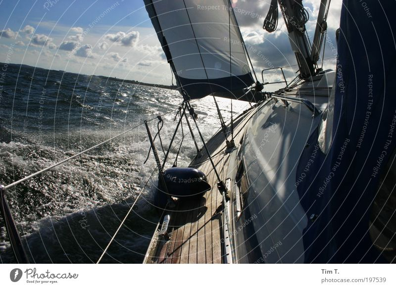 sailing Leisure and hobbies Vacation & Travel Adventure Far-off places Freedom Cruise Summer Summer vacation Ocean Environment Nature Water Weather