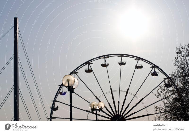 Bridge, lamps, Ferris wheel and tree Fairs & Carnivals Nature Air Sky Cloudless sky Sun Sunlight Summer Beautiful weather Tree Duesseldorf Old town Skyline