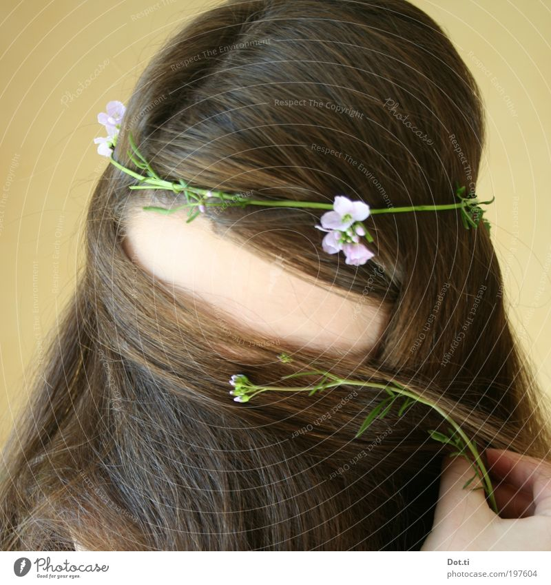 Girl with long hair and wreath of flowers Hair and hairstyles Human being Feminine Young woman Youth (Young adults) Head Hand 1 18 - 30 years Adults Brunette