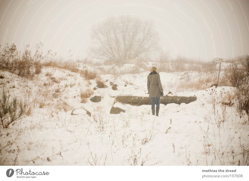 SHE WALKS AWAY Human being Environment Nature Landscape Sky Horizon Winter Bad weather Fog Ice Frost Snow Plant Tree Bushes Meadow Field Movement Think Going