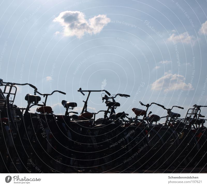Fahrräder in Amsterdam City Vacation & Travel Bicycle Esthetic Simple Sightseeing Netherlands