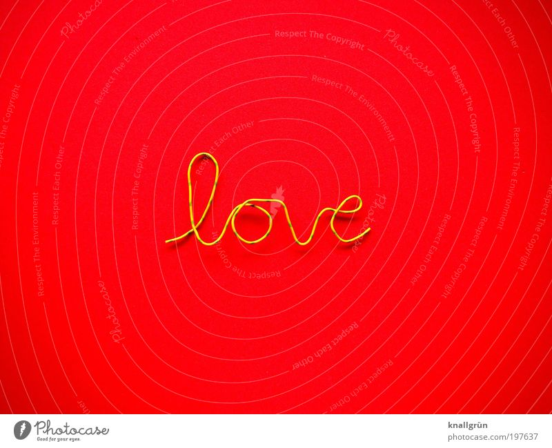 just a word Characters Yellow Green Red Emotions Love Relationship Wire fiery red Colour photo Multicoloured Studio shot Close-up Deserted Copy Space left