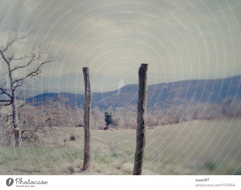Where do you go to, my lovely? Tuscany Pole Wooden stake Italy Blur positive liquid Landscape