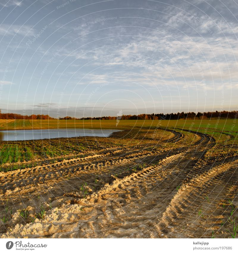quarry pond Work and employment Profession Economy Environment Nature Landscape Plant Animal Elements Earth Water Climate Beautiful weather Agricultural crop