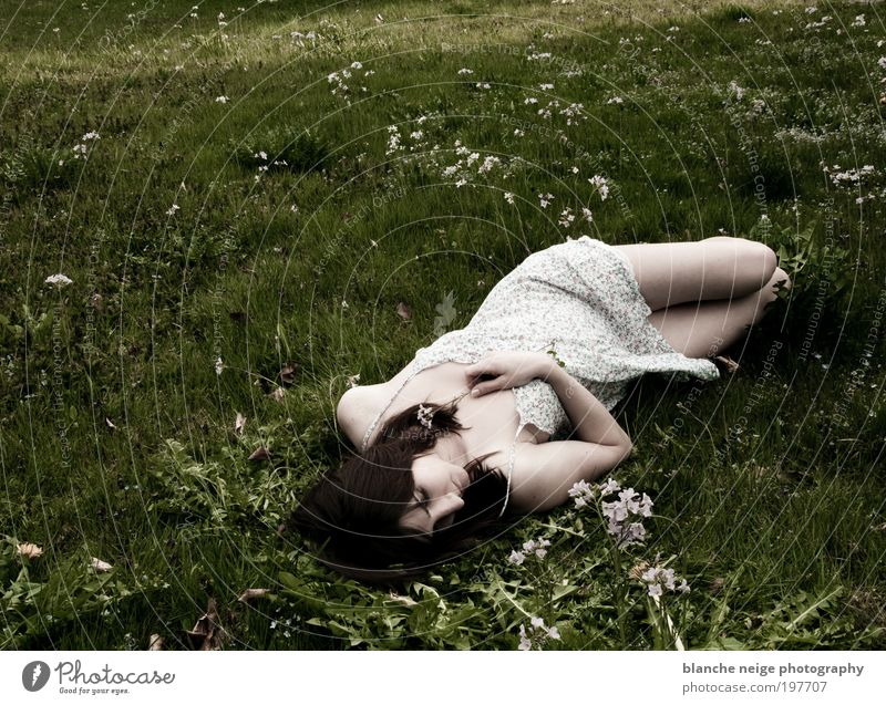 Woman Human being Youth (Young adults) Calm Adults Loneliness Relaxation Feminine Meadow Eroticism Emotions Spring Dream Legs Contentment Arm