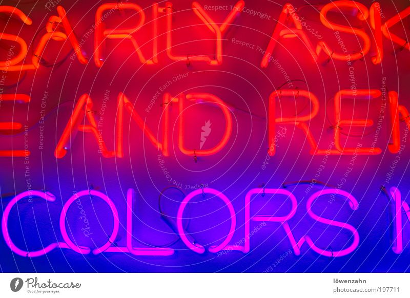 and.colors Lamp Bright Hip & trendy Uniqueness Cold Beautiful Warmth Violet Red Creativity Neon light Fluorescent Lights Installations Colour photo