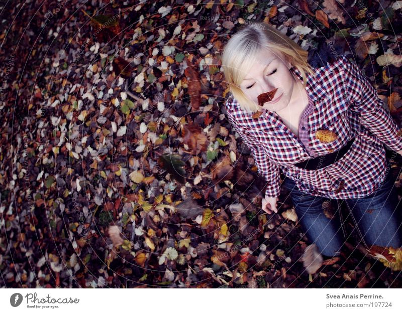 rain. Playing Feminine Young woman Youth (Young adults) 1 Human being 18 - 30 years Adults Autumn Plant Leaf Shirt Jeans Blonde Short-haired To enjoy Smiling