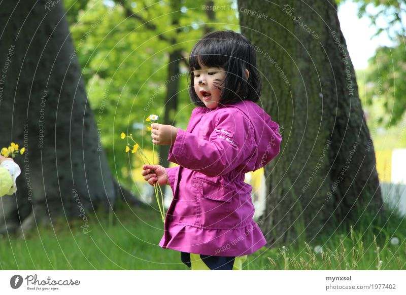 Human being Child Nature Plant Summer Tree Landscape Flower Leaf Environment Blossom Spring Meadow Natural Grass Feminine