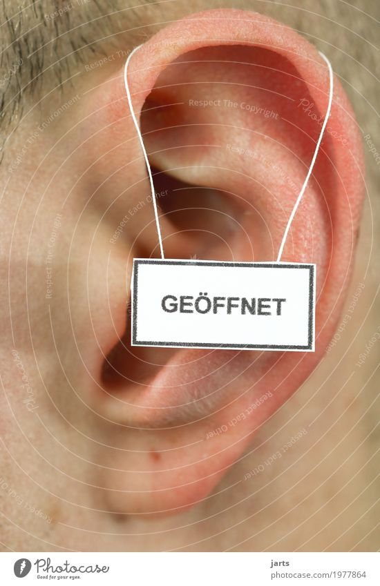 Open Masculine Ear 1 Human being Signage Warning sign Listening Natural Positive Communicate Life Colour photo Studio shot Close-up Detail Copy Space top