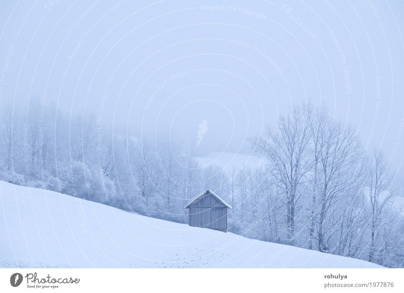wooden hut during frosty morning in Alps Vacation & Travel Winter Snow Mountain House (Residential Structure) Nature Landscape Weather Fog Snowfall Tree Hill