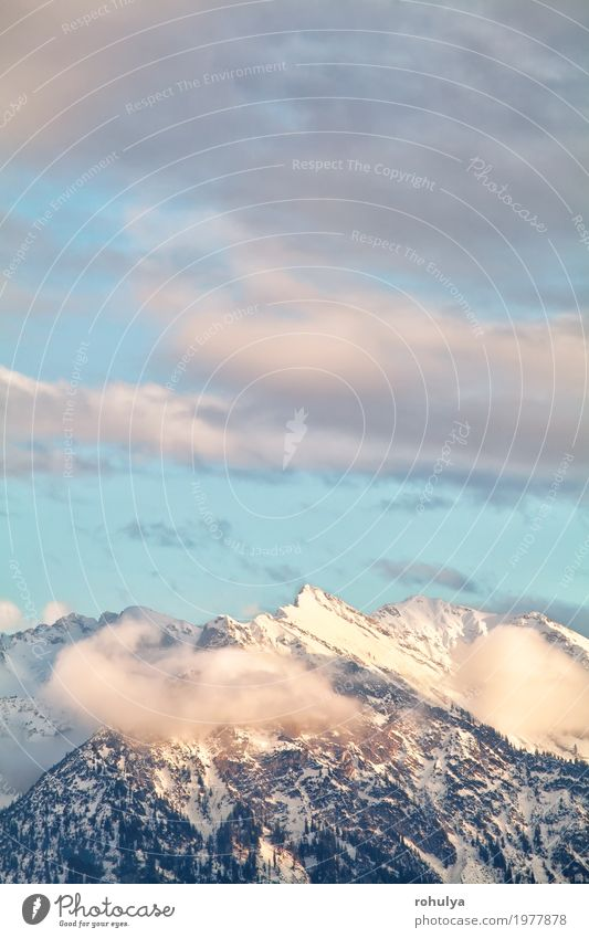 mountain peaks over sky in evening sunlight Sky Nature Vacation & Travel Blue Landscape Clouds Winter Forest Mountain Snow Germany Vantage point Peak Alps