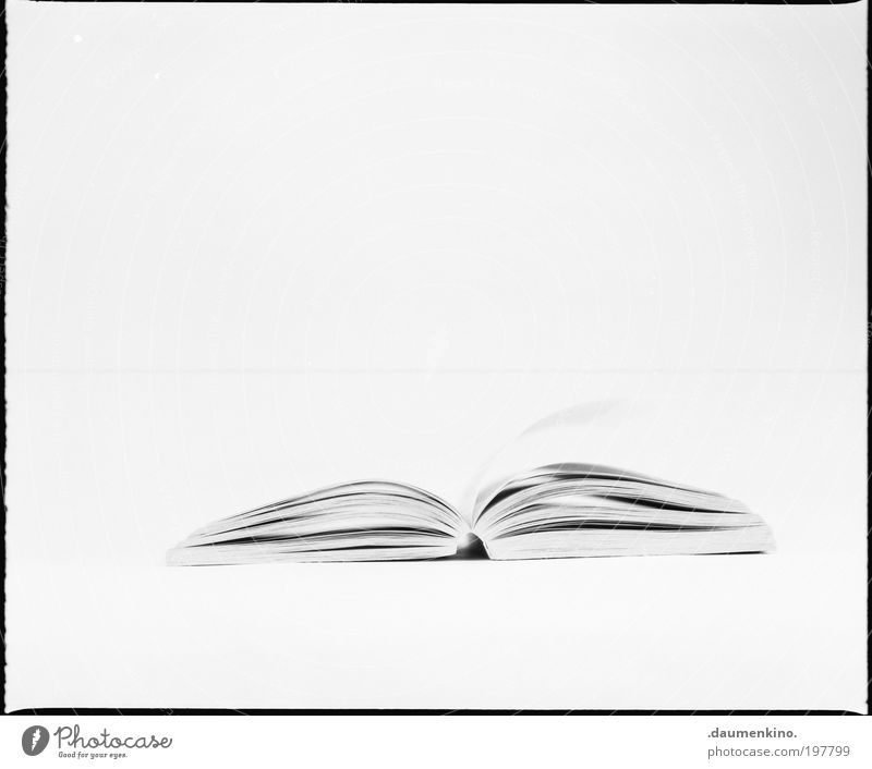 - - Paper Piece of paper Esthetic Black & white photo Studio shot Artificial light High-key Central perspective Notebook Isolated Image Copy Space top