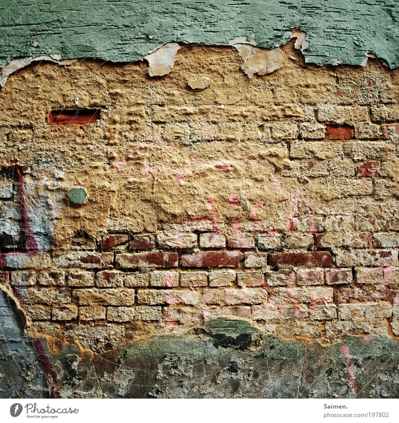 Old Face Wall (building) Wall (barrier) Design Contentment Friendliness Derelict Plaster Brick wall Congenial Complementary colour Stone wall Human being
