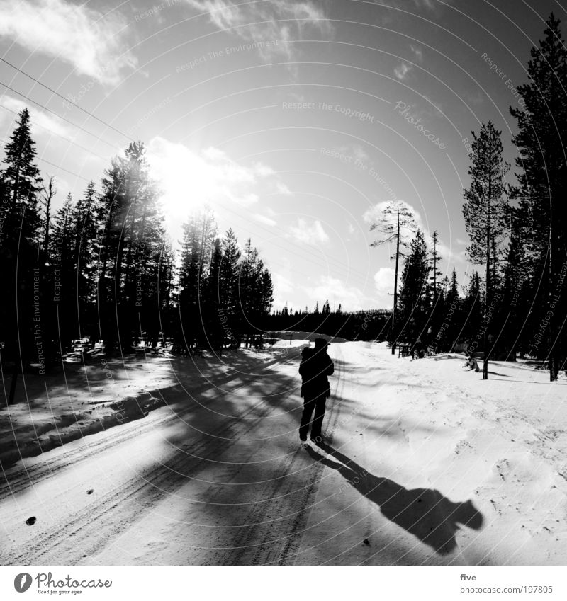 direction kittilä Vacation & Travel Tourism Trip Adventure Far-off places Freedom Winter Snow Winter vacation Hiking Human being Masculine 1 Nature Sky