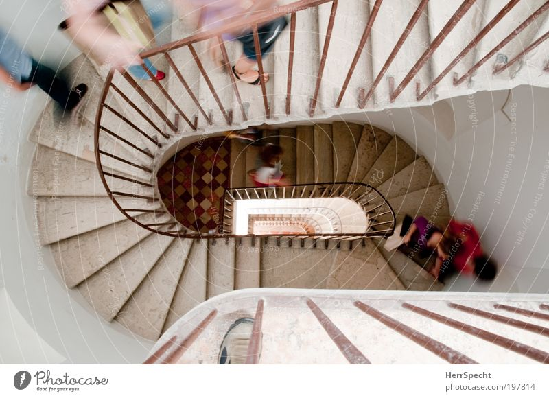 the only way is up Human being Masculine Group House (Residential Structure) Building Architecture Stairs Running Above Multicoloured White Endurance