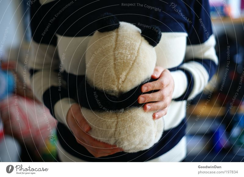 Suboptimal camouflage Human being Partner 1 Animal Cuddly toy Touch Relaxation To hold on Love Free Happiness Warmth Soft Blue White Contentment Panda