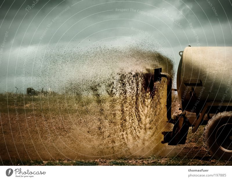 Spring time - Slurry time Agricultural machine Sky Clouds Field Trailer Dirty Blue Brown Environmental pollution Colour photo Exterior shot Day Shadow Contrast