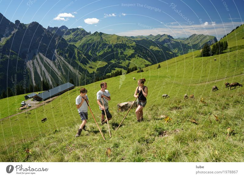pastoralists Environment Nature Landscape Summer Beautiful weather Rock Alps Mountain Peak Communicate Forest of Bregenz Vorarlberg Alpine pasture Agriculture