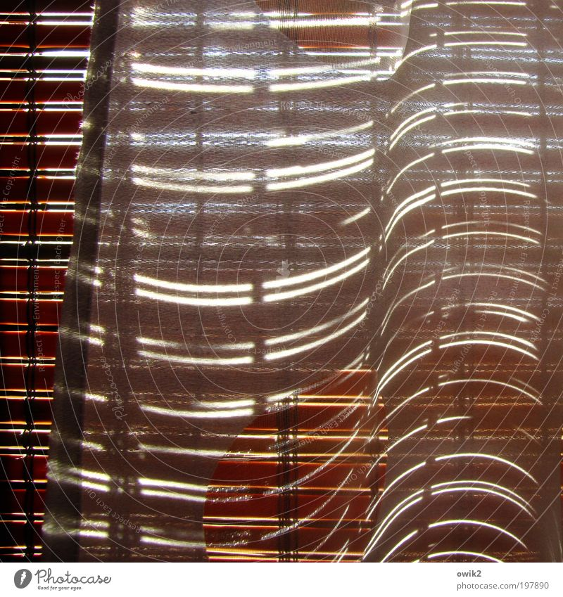 Minimal Music Living or residing Flat (apartment) Interior design Decoration Window Venetian blinds Drape Wood Glittering Illuminate Design Uniqueness Elegant