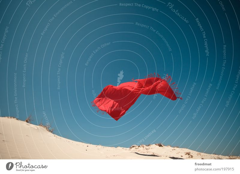 Sky Nature Red Summer Landscape Movement Sand Air Horizon Earth Wind Exceptional Elements Beautiful weather Desert Fantastic