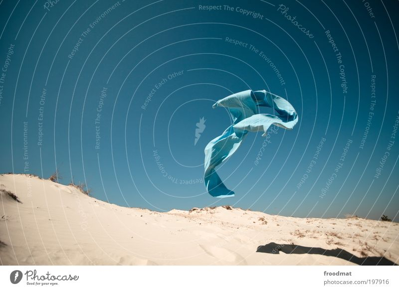 Summer Movement Sand Air Dream Art Horizon Earth Wind Flying Speed Esthetic Elements Beautiful weather Fantastic Idea