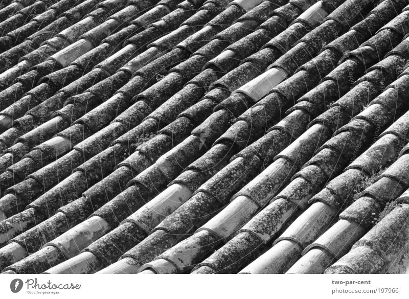 Rooftiles in Spain Architecture Design Roof Village Symmetry Black & white photo Old town Town