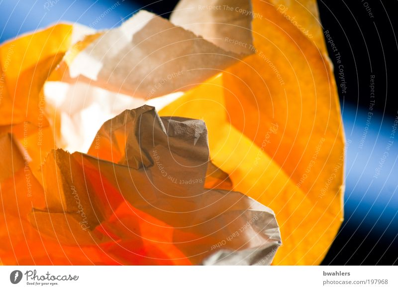 waste paper Food Nutrition Paper Packaging To enjoy Wastepaper Colour photo Multicoloured Interior shot Abstract Structures and shapes Light Shadow Sunlight