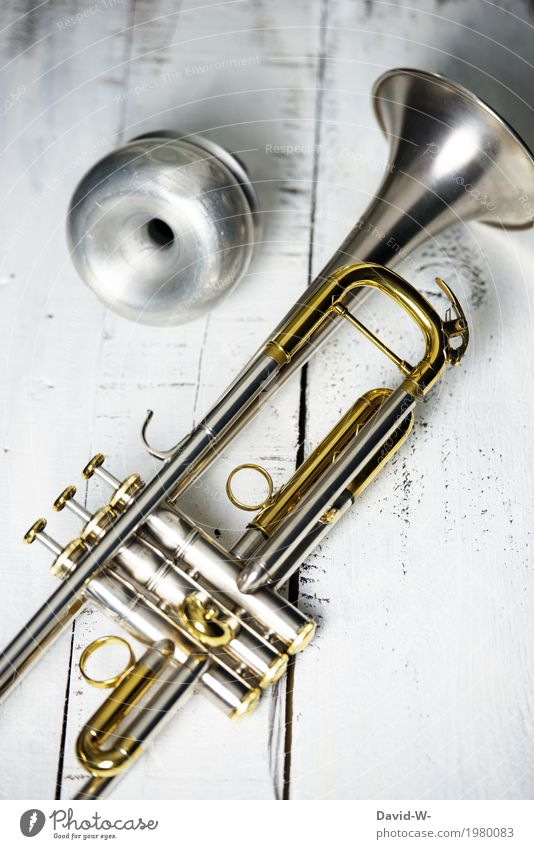 jazz Elegant Joy Leisure and hobbies Playing Entertainment Party Event Music Feasts & Celebrations Wedding Birthday Funeral service School Academic studies