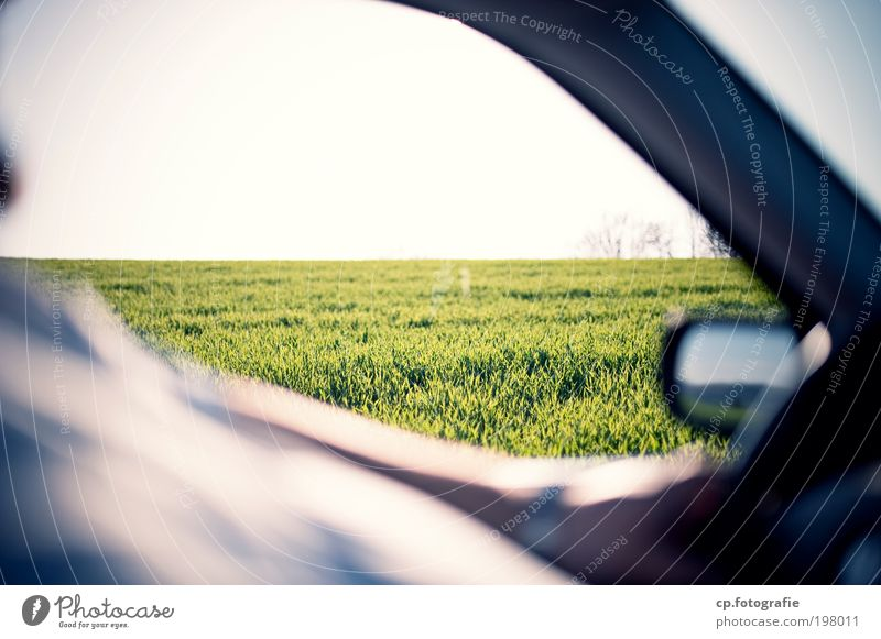 Photo Tour Safari Masculine Man Adults Arm Stomach Nature Plant Sun Beautiful weather Grass Means of transport Road traffic Motoring Street Vehicle Car