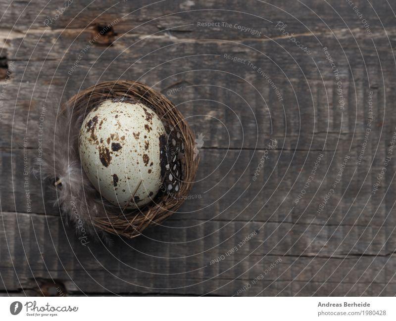 Nature Spring Pink Easter Symbols and metaphors Event Egg Wooden table Easter egg Nest Grunge Easter egg nest Texture of wood