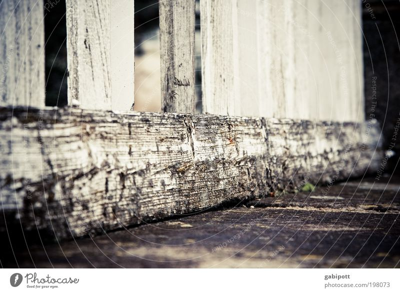 Old Wall (building) Wood Wall (barrier) Building Architecture Going Weather Retro Gloomy Broken Protection Tracks Transience Decline Past
