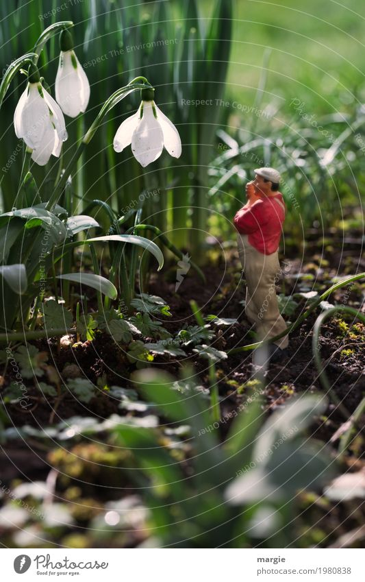 Miniwelten - I don't hear anything! Work and employment Gardening Workplace Human being Masculine Man Adults 1 Nature Plant Beautiful weather Flower Grass