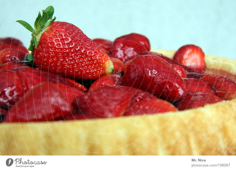 Summer Red Healthy Fruit Food Fresh Nutrition Sweet To enjoy Appetite Seasons Delicious Cake Gateau Juicy Baked goods