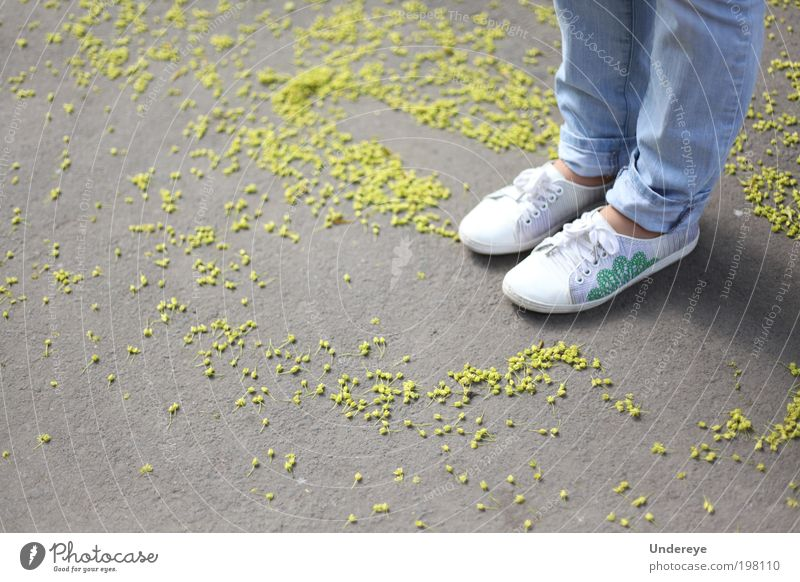 Spring Particles Human being Girl Youth (Young adults) Legs 1 13 - 18 years Child Blossom Jeans Sneakers Blue Yellow White Colour photo Exterior shot Detail Day