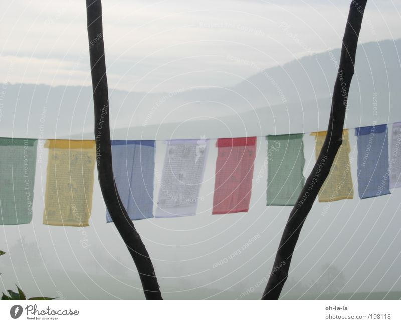 Tibetan flags Nature Fog Calm Belief Humble Buddhism Colour photo Exterior shot Dawn Central perspective