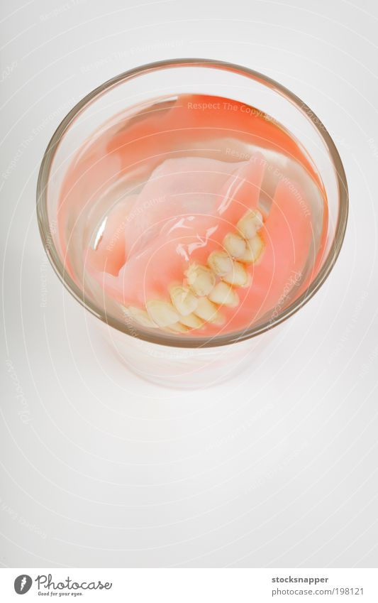 Old Dentures denture dentures False Teeth Artificial Objective Dirty ugly Glass Water nobody Object photography