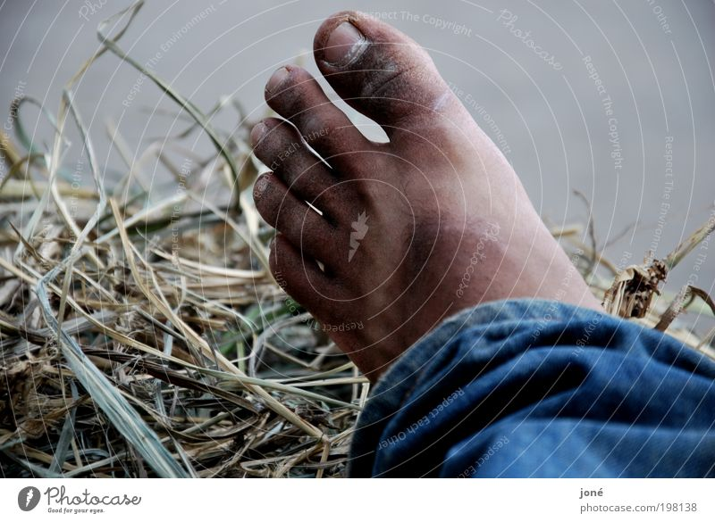 Flip-flop. Human being Masculine Young man Youth (Young adults) Life Feet 1 18 - 30 years Adults Nature Beautiful weather Bushes Wild plant Think Lie Dirty